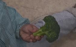 verduras5