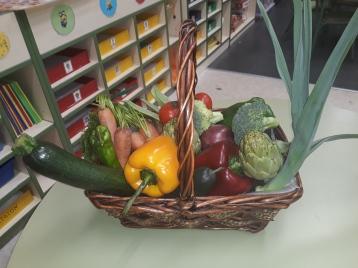 verduras8